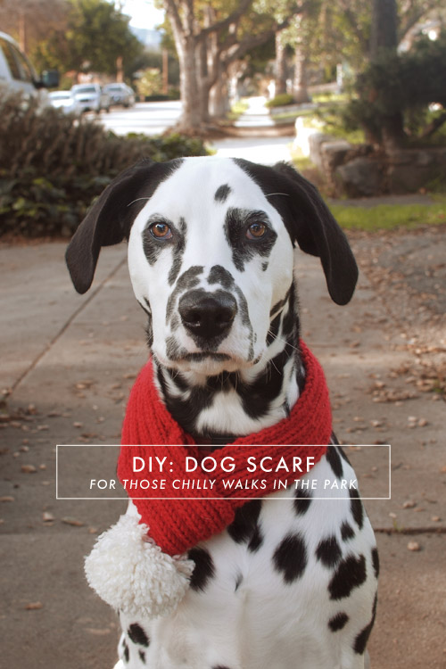 Diy Dog Scarf Jamie Bartlett Design