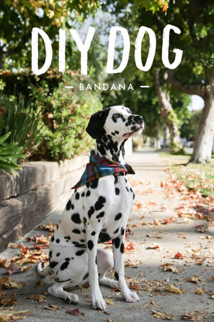 Diy Dog Bandana Jamie Bartlett Design